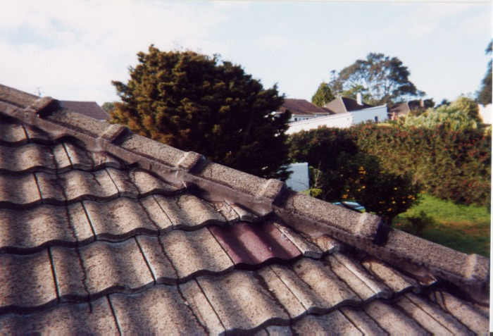 Concrete Roof Painting Auckland Roof Painters The Roof